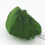 oczyszczanie algi